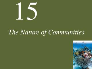 The Nature of Communities