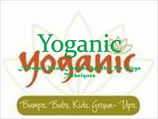 Necessity of Yoga: Brief by Yoganic