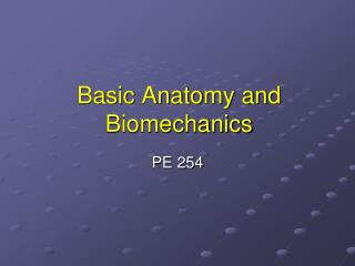 Basic Anatomy and Biomechanics