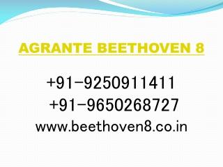 Beethoven 8 Sector 107 Gurgaon @ 9250911411