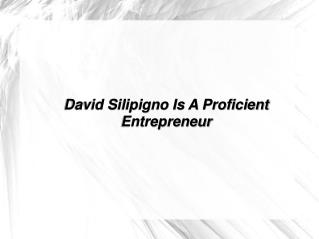 david silipigno is a proficient entrepreneur