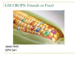GM CROPS: Friends or Foes?