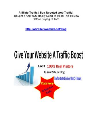 Affiliate Traffic Review