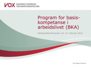 Program for basis-kompetanse i arbeidslivet (BKA)