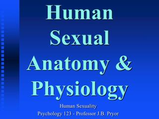 Human Sexual Anatomy & Physiology
