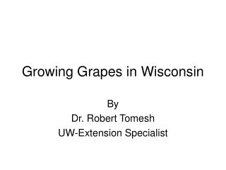 Growing Grapes in Wisconsin