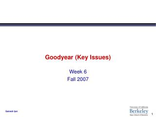 Goodyear (Key Issues)