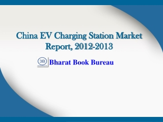 China EV Charging Station Market Report, 2012-2013