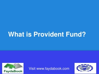 What is Provident Fund? All you need to know