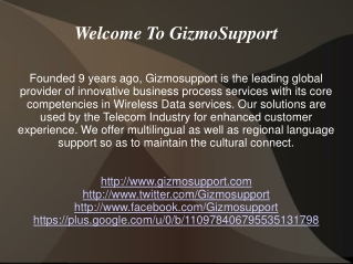 Gizmosupport Services