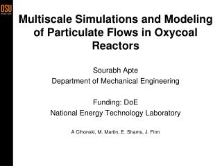 Multiscale Simulations and Modeling of Particulate Flows in Oxycoal Reactors