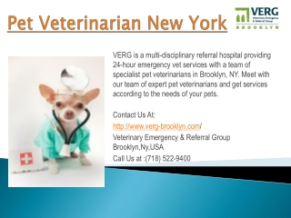 pet veterinarian new york