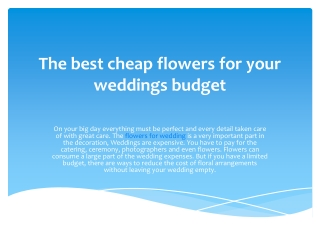 the best cheap flowers for your wedding budget