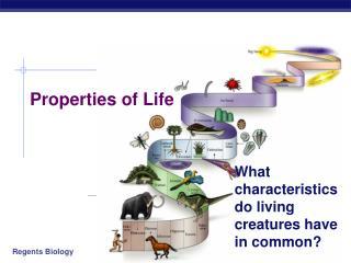 Properties of Life