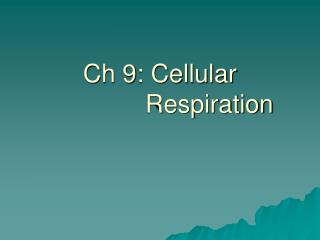 Ch 9: Cellular               Respiration