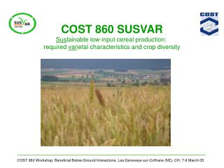 COST 860 SUSVAR Sus tainable low-input cereal production: required var ietal characteristics and crop diversity