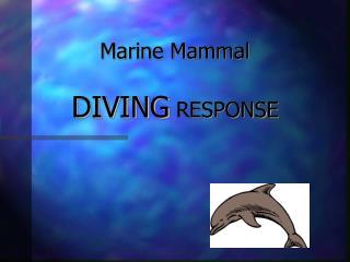 Marine Mammal DIVING RESPONSE