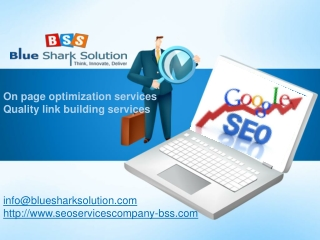Preeminent SEO services for strengthening your online presen
