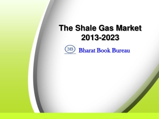 The Shale Gas Market 2013-2023