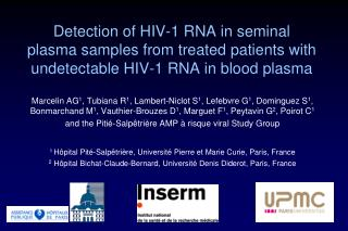 Detection of HIV-1 RNA in seminal plasma samples from treated patients with undetectable HIV-1 RNA in blood plasma