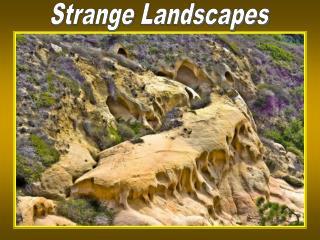 Strange Landscapes