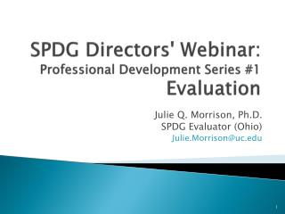 SPDG Directors Webinar:  Professional Development Series 1  Evaluation