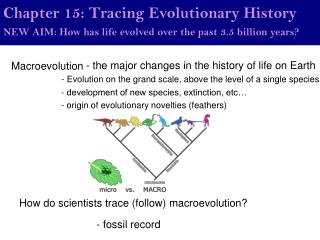 Chapter 15: Tracing Evolutionary History