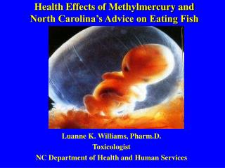 Health Effects of Methylmercury and North Carolina's Advice on Eating Fish