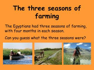 The three seasons of farming