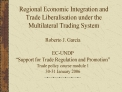 Roberto J. Garcia  EC-UNDP   Support for Trade Regulation and Promotion  Trade policy course module 1 30-31 January 2006