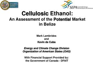 Cellulosic  Ethanol: An Assessment of the  Potentia l Market  in Belize