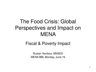 The Food Crisis: Global Perspectives and Impact on MENA