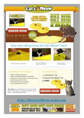 Buy Cats Meow and Give Your Pet the Gift of Unending Fun