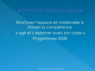 Animation Pédagogique