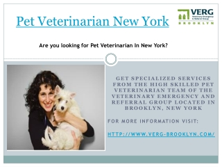 pet veterinarian new york , brooklyn