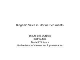 Biogenic Silica in Marine Sediments