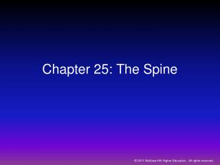 Chapter 25: The Spine