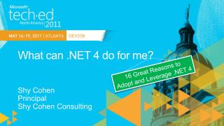 What can .NET 4 do for me?