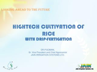 HIGHTECH CULTIVATION OF RICE