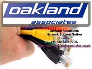 The Great in IT Support - Network Support Sutton