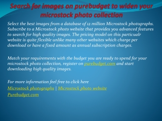 Search for images on purebudget to widen your microstock pho