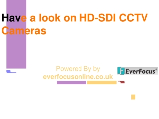 Everfocus CCTV, CCTV Camera, IP Cams, CCTV DVR, Door Entry