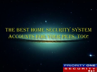 The Best Home Security System Accounts for Your Pets, Too!