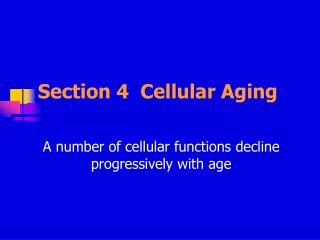 Section 4 Cellular Aging