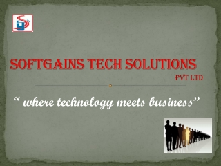Softgains Tech Solutions Pvt ltd