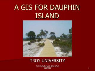 A GIS FOR DAUPHIN ISLAND