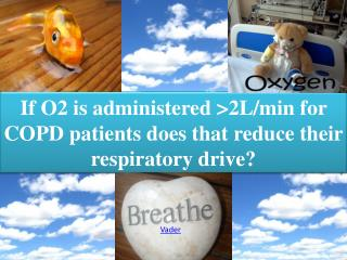 If O2 is administered >2L/min for COPD patients does that reduce their respiratory drive?