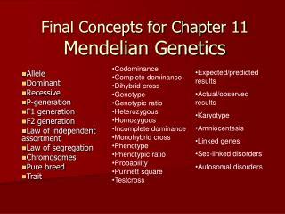 Final Concepts for Chapter 11 Mendelian Genetics