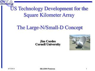 US Technology Development for the Square Kilometer Array  The Large-N/Small-D Concept