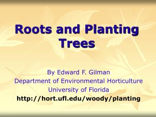 Roots and Planting Trees